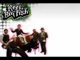 Reel Big Fish Beer