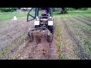 Работа модернизированной картофелекопалки