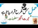 How to pregnant/hamal ka tarika/hamal kaise hota hai/hamal/how to pregnat fast/how to pregnancy urdu