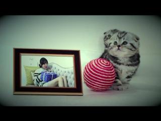 MV [2016.12.22] NC.A(앤씨아), YOOK SUNG JAE(육성재) (BTOB) - Playing with fire(봄에 오면 괴롭힐 거예요)