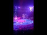 Цирк на водi Палац Укра