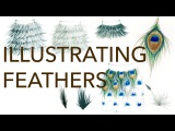 Fashion Illustration Tutorial Feathers