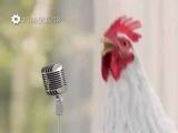 Петушиный рэп