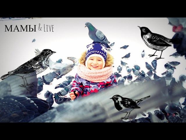 БЛОГ Площадь с бешенными) голубями кормим ПТИЦ зимой МАМЫ Live