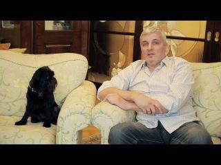 Брюссельский гриффон. Бельгийский гриффон. Дрессированая собака. Умнейший пёс - ...