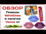 Lime Crime палетка теней Venus и Velvetines - Posh, Teacup, Prairie. Обзор и отзыв Дарья Дзюба