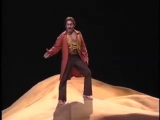 Fin chhan dal vino - Don Giovanni