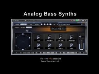 Digital Sound Factory - Analog Bass Synths