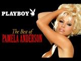Playboy: The Best of Pamela Anderson (1995)