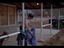 Ублюдок из Каролины (1996) [Страх и Трепет]