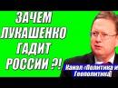 Михаил Делягин – Лукашенко не дали скидку на нефть он решил нагадить России 18.02....