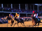 2011 Breeders' Cup The Highlights