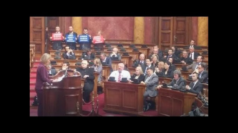 HAOS U PARLAMENTU Mogerini u Beogradu, Seselj i radikali vicu Srbija, Rusija, ne treba nam Unija!