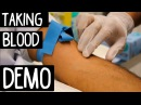 Venipuncture OSCE Exam Demo - Phlebotomy using vacutainer