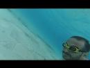 Ormandaki havuz