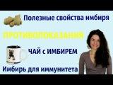 Полезные свойства имбиря и противопоказания / Корень имбиря для иммунитета / Чай...