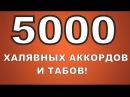 5000 ХАЛЯВНЫХ аккордов и табов! СКАЧИВАЙ