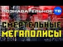 Смертельные мегаполисы Познавательное ТВ Михаил Величко