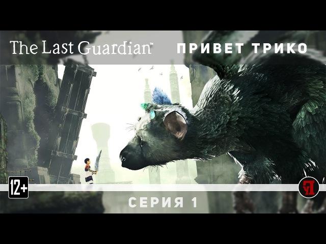 Прохождение The Last Guardian 1 Привет Трико Последний Хранитель PS4 Pro