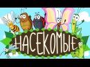 НОВЫЕ!!! Учим НАСЕКОМЫХ -  для детей!! Развивающие мультфильмы для малышей