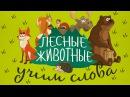 Животные для детей - Лесные животные Учим животных - развивающие мультики! Учим слова