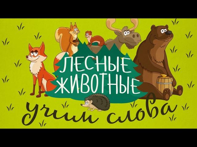 Животные для детей - Лесные животные || Учим животных - развивающие мультики! Учим слова