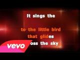 ProSingKaraoke - Annie Lennox - Little Bird (Karaoke Version And Lyrics)