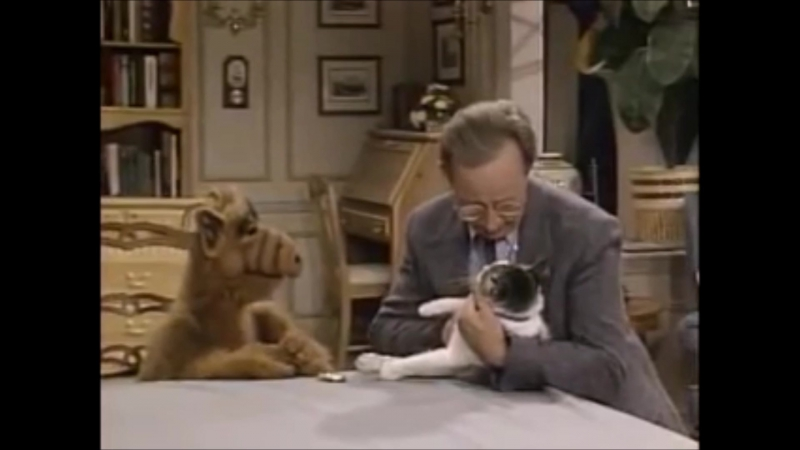 Alf tries to eat the cat