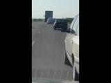 У водилы истерический смех - засняли необычного пассажира