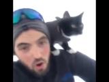 Катаюсь на санках со своей кошкой