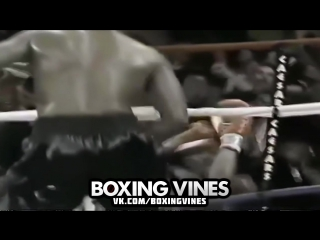 BOXERS PUNCHED THROUGH THE ROPES #3 (Boxing Vines) | vk.com/boxingvines