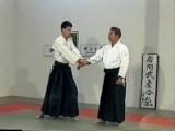 Morihiro Saito Sensei. Morote Dori