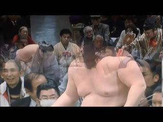 Sumo -Hatsu Basho 2017 Day 9, January 16th -大相撲初場所 2017年 9日目