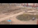Жители уфимского микрорайона Юрюзань уже девять лет пытаются добиться строите