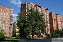 25 июля 2015 - Дуб Комзина в Тольятти