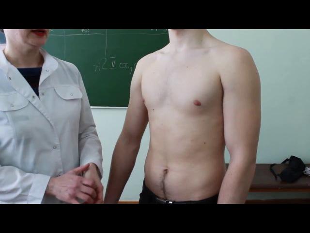 Сравнительная перкуссия легких