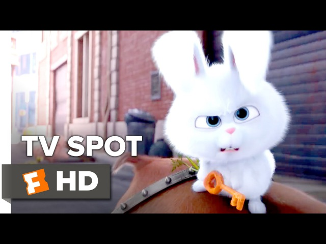 The Secret Life of Pets TV SPOT - Wonder (2016) - Louis C.K. Movie