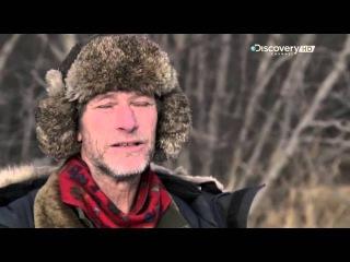 03 Мятежники ледяного озера Медведи и капканы