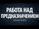 Работа над предназначением. Александр Палиенко.