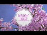Sequencer Melodic House (Drum Pad Machine)