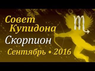 Скорпион, совет Купидона на сентябрь 2016. Любовный гороскоп.
