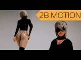 2B MOTION