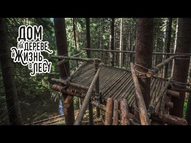 Финал проекта Дом на дереве и жизнь в лесу