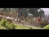 Choosa Choosa Song Promo -- Dhruva -- Ram Charan, Rakul Preet, HipHop Tamizha, Surender Reddy