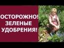 ОСТОРОЖНО- ЗЕЛЕНЫЕ УДОБРЕНИЯ ! ! !