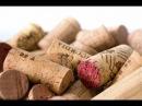 Вино. Виноделие Аргентины.
