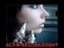 Acylum/Schwarzdekadent
