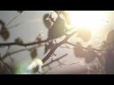 Chuck D. Feat. Ambersunshower - War (HD)