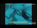 Водное поло. Подводная съёмка. Жёсткие приколы
