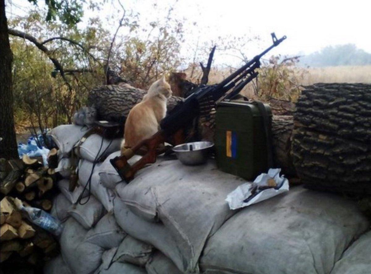 За минувшие сутки зафиксировано 34 обстрела: по позициям ВСУ боевики применяли крупнокалиберную артиллерию, были задействованы снайперы, - штаб - Цензор.НЕТ 3807